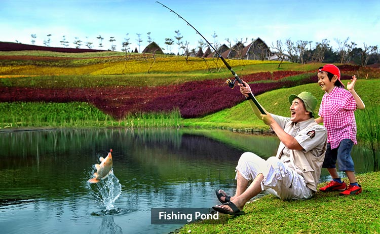 fishingpond